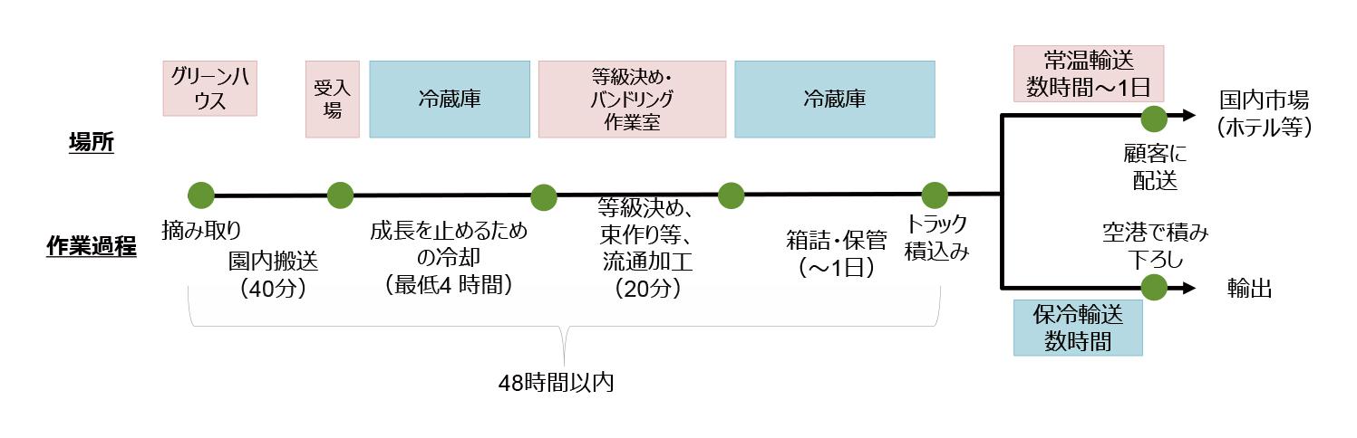 図:花き農園から出荷までの流れ(ある農園の例)
